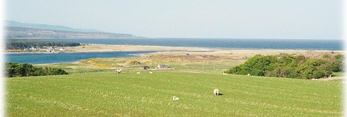 View over Oystercatchers to the sea