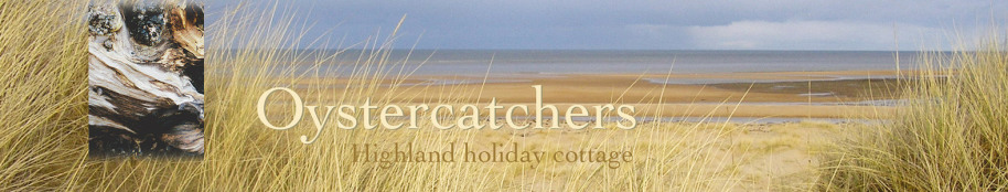 Oystercatchers highland holiday cottage title with beach view and driftwood