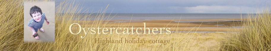 Oystercatchers highland holiday cottage title with beach view and boy with crab