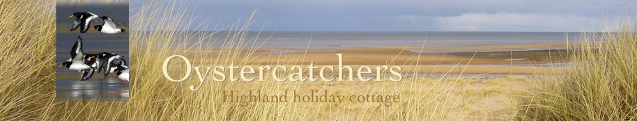 Oystercatchers highland holiday cottage title with beach view and oystercatchers