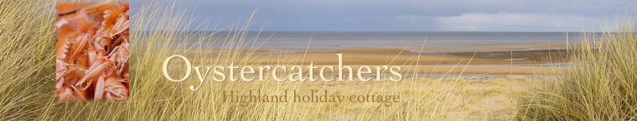 Oystercatchers highland holiday cottage title with beach view and langoustine