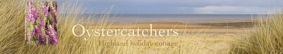 Oystercatchers highland holiday cottage title with beach view and heather