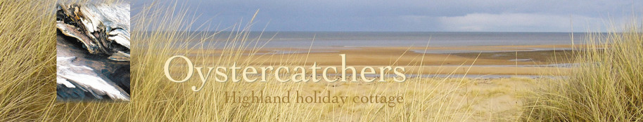 Oystercatchers highland holiday cottage title with beach view and bleached driftwood