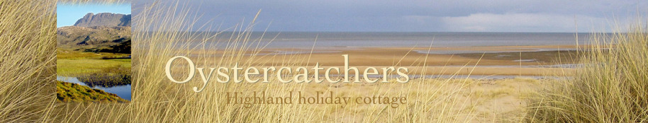 Oystercatchers highland holiday cottage title with beach view and mountain