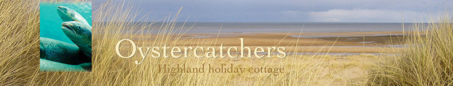 Oystercatchers highland holiday cottage title with beach view and salmon